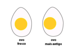 ovo-cozido-03