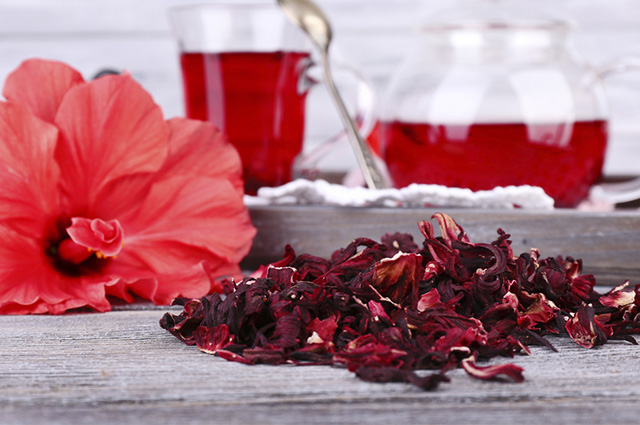 cha-flor-erva-planta-hibisco - blog pitacos e achados