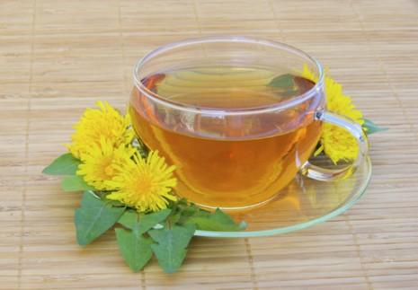 chá-dente-de-leão