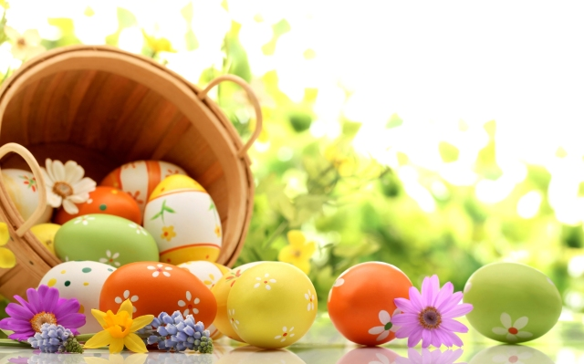 Holidays___Easter_Basket_of_eggs_on_green_background_for_Easter_072821_1