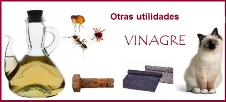 otras_utilidades_del_vinagre_en_limpieza