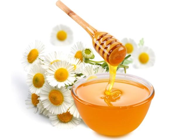 Conheça os vários benefícios do mel