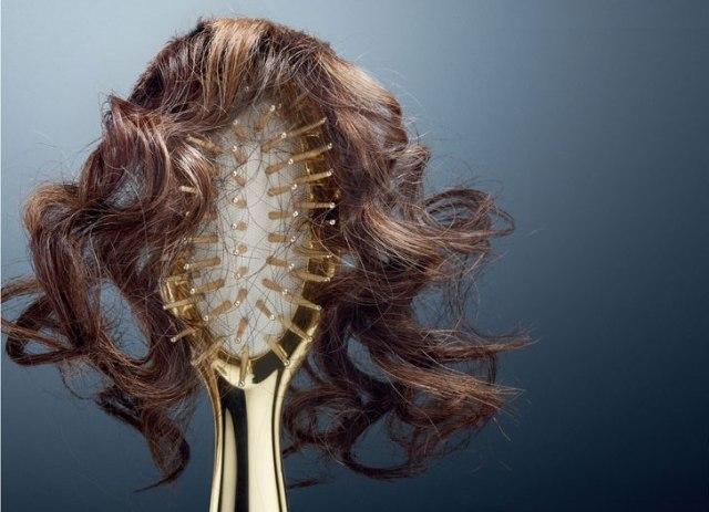 Queda de cabelos no inverno. Saiba como evitar! Acesse: https://pitacoseachados.wordpress.com #pitacoseachados