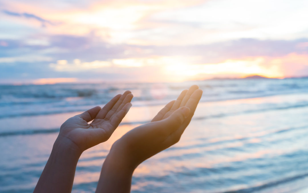 Closeup woman hands praying for blessing from god during  sunset
