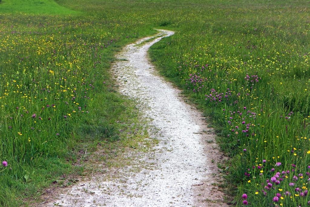 trail-352284_1280-1024x682