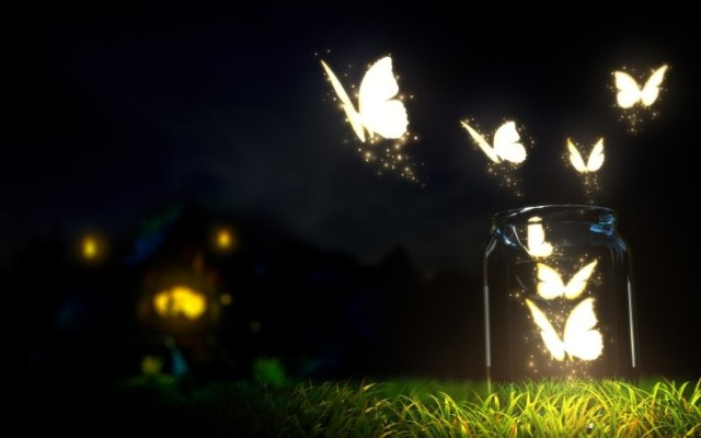 sparkling-butterflies-at-night-hd-wallpaper-728x455