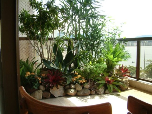 Muitas vezes Paisagismo: como decorar sua casa com plantas naturais ou  XN94