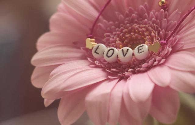 Dia Dos Namorados 7 Frases De Amor Para Dedicar E Refletir Blog