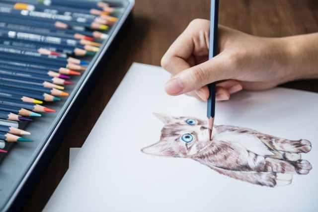 Os principais benefícios de ter um hobby - blog pitacos e achados a