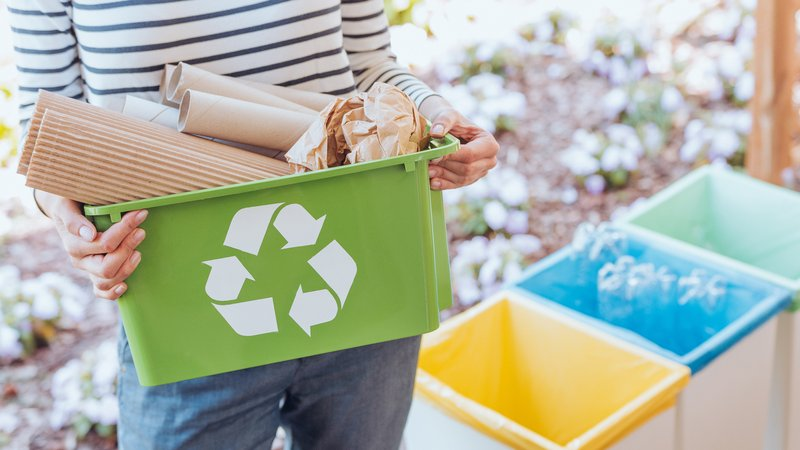 7 dicas para uma vida mais eco-friendly - pitacos e achados2